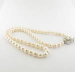 Single strand Akoya cultured pearl necklace with silver and pearl clasp